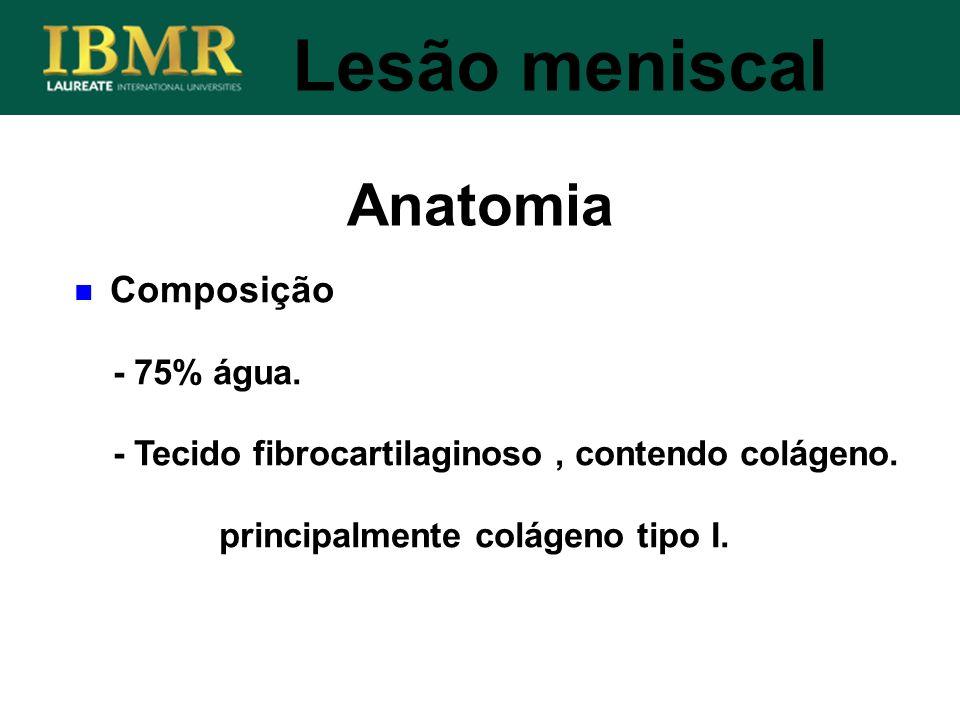 Anatomia Lesão meniscal Composição - 75% água. - Tecido fibrocartilaginoso, contendo colágeno. principalmente colágeno tipo I.