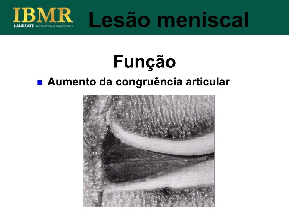 Função Lesão meniscal Aumento da congruência articular