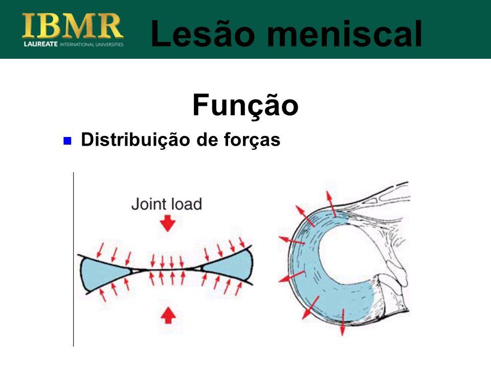 Função Lesão meniscal Distribuição de forças