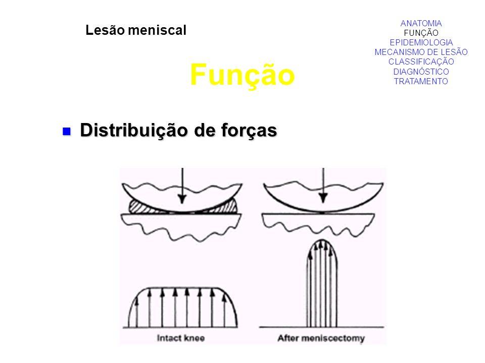 Lesão meniscal Função ANATOMIA FUNÇÃO EPIDEMIOLOGIA MECANISMO DE LESÃO CLASSIFICAÇÃO DIAGNÓSTICO TRATAMENTO Distribuição de forças Distribuição de for