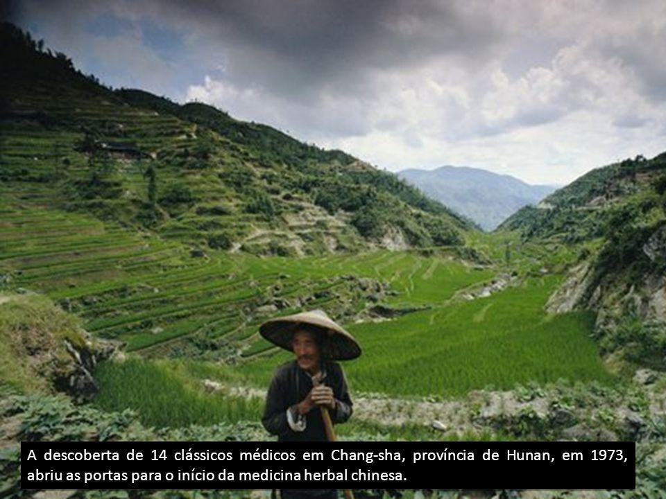 A descoberta de 14 clássicos médicos em Chang-sha, província de Hunan, em 1973, abriu as portas para o início da medicina herbal chinesa.