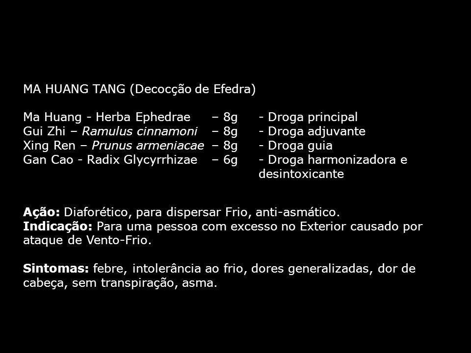 MA HUANG TANG (Decocção de Efedra) Ma Huang - Herba Ephedrae – 8g - Droga principal Gui Zhi – Ramulus cinnamoni – 8g- Droga adjuvante Xing Ren – Prunus armeniacae – 8g- Droga guia Gan Cao - Radix Glycyrrhizae – 6g- Droga harmonizadora e desintoxicante MA HUANG TANG (Decocção de Efedra) Ma Huang - Herba Ephedrae – 8g - Droga principal Gui Zhi – Ramulus cinnamoni – 8g- Droga adjuvante Xing Ren – Prunus armeniacae – 8g- Droga guia Gan Cao - Radix Glycyrrhizae – 6g- Droga harmonizadora e desintoxicante Ação: Diaforético, para dispersar Frio, anti-asmático.