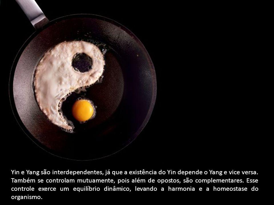 Yin e Yang são interdependentes, já que a existência do Yin depende o Yang e vice versa.