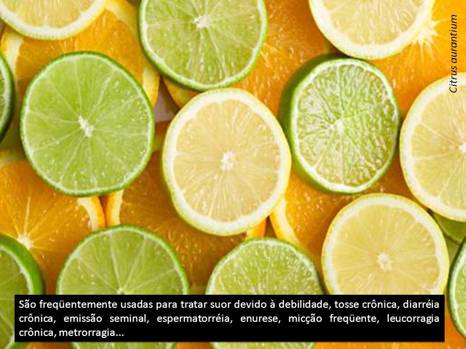 São freqüentemente usadas para tratar suor devido à debilidade, tosse crônica, diarréia crônica, emissão seminal, espermatorréia, enurese, micção freqüente, leucorragia crônica, metrorragia...