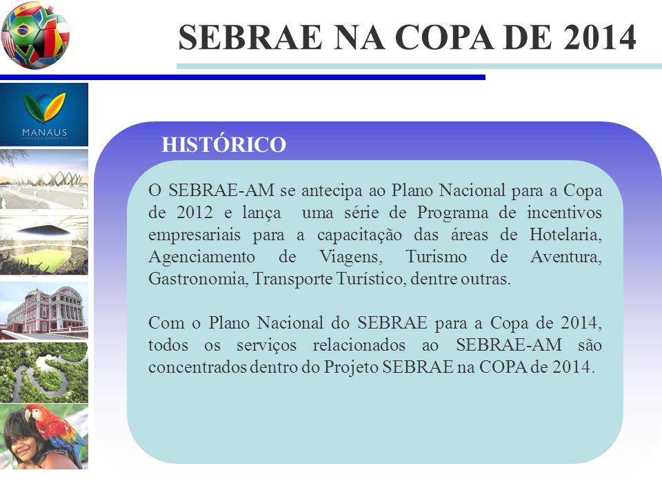 SEBRAE NA COPA DE 2014 O SEBRAE-AM se antecipa ao Plano Nacional para a Copa de 2012 e lança uma série de Programa de incentivos empresariais para a capacitação das áreas de Hotelaria, Agenciamento de Viagens, Turismo de Aventura, Gastronomia, Transporte Turístico, dentre outras.