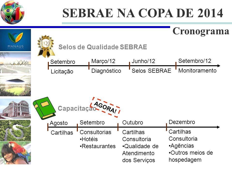 SEBRAE NA COPA DE 2014 Cronograma Setembro Março/12 Licitação Diagnóstico Junho/12 Selos SEBRAE Setembro/12 Monitoramento Selos de Qualidade SEBRAE Ag