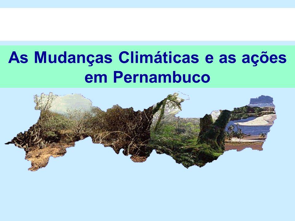 Consultas Públicas Realizadas nos dias e locais: 01 e 02 de fevereiro em Recife 08 de fevereiro em Caruaru 23 de fevereiro em Araripina Recebimento de propostas de modificações por e-mail No total contamos com a participação direta de mais de 150 pessoas de 78 instituições nas reuniões.