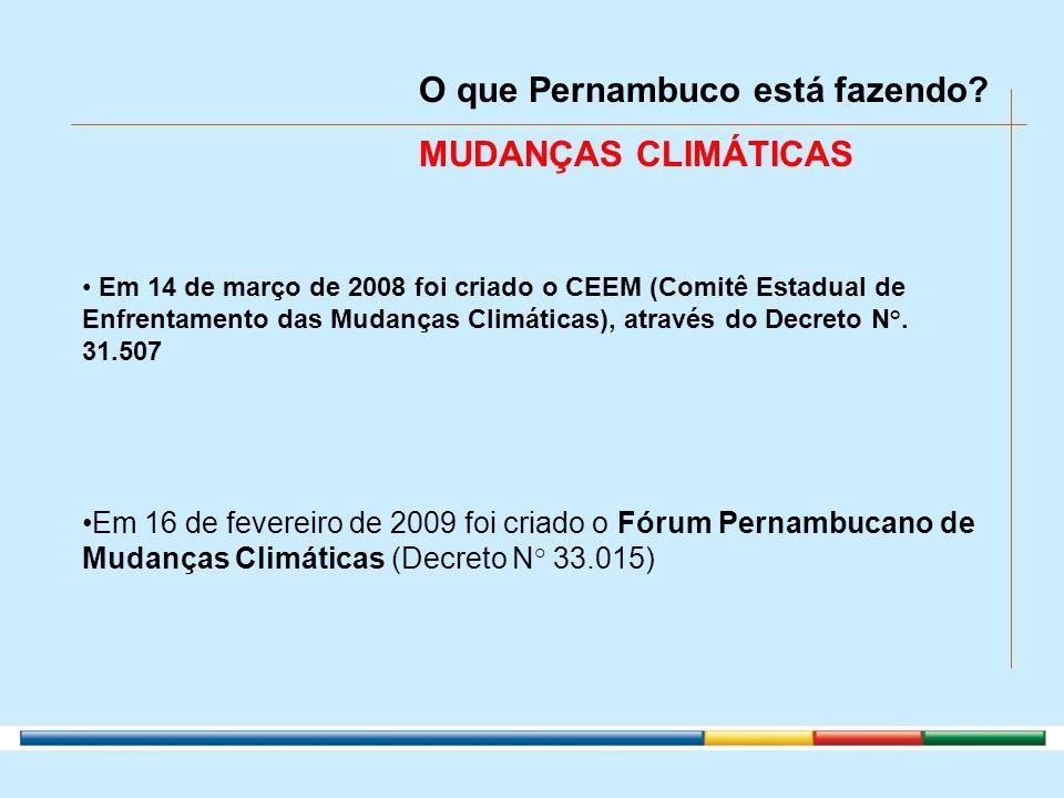 Em 16 de fevereiro de 2009 foi criado o Fórum Pernambucano de Mudanças Climáticas (Decreto N° 33.015) O que Pernambuco está fazendo? MUDANÇAS CLIMÁTIC
