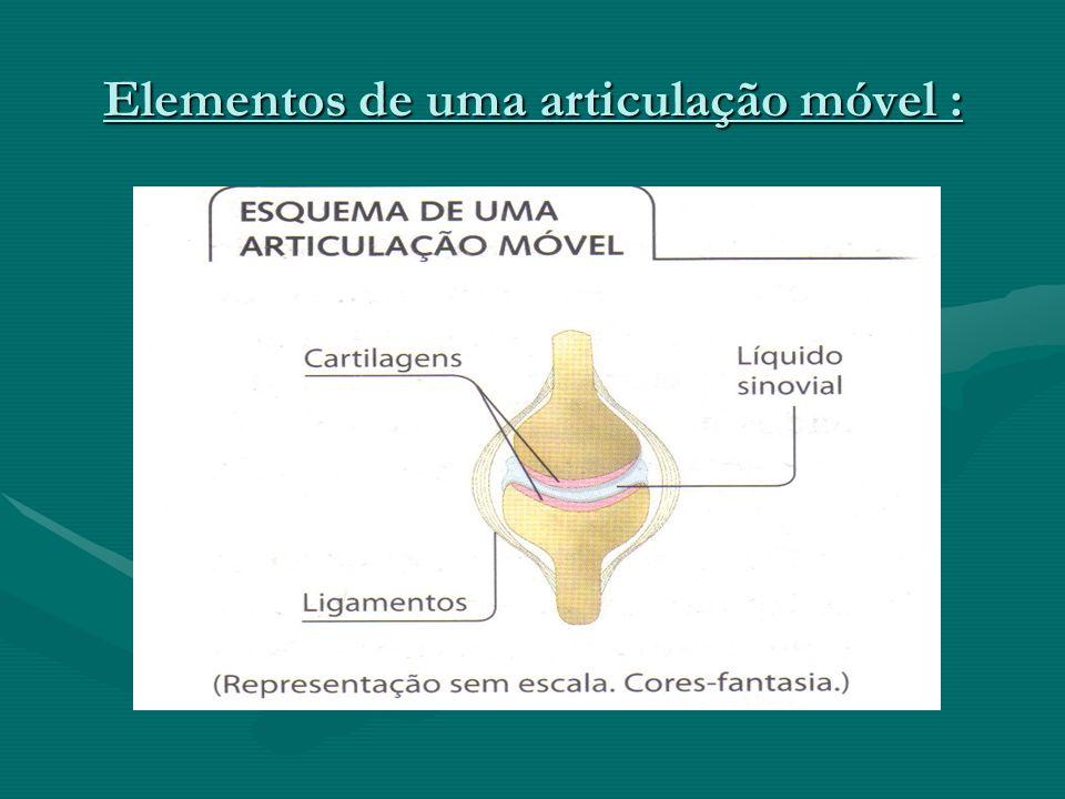 Doenças das articulações : Artrite : inflamação das articulações ;Artrite : inflamação das articulações ; Artrose : degeneração da cartilagem ;Artrose : degeneração da cartilagem ;