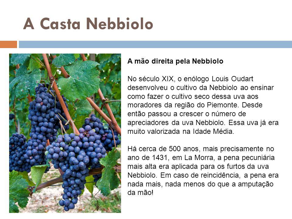 A Casta Nebbiolo A mão direita pela Nebbiolo No século XIX, o enólogo Louis Oudart desenvolveu o cultivo da Nebbiolo ao ensinar como fazer o cultivo s