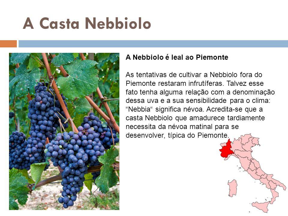 A Casta Nebbiolo A Nebbiolo é leal ao Piemonte As tentativas de cultivar a Nebbiolo fora do Piemonte restaram infrutíferas. Talvez esse fato tenha alg