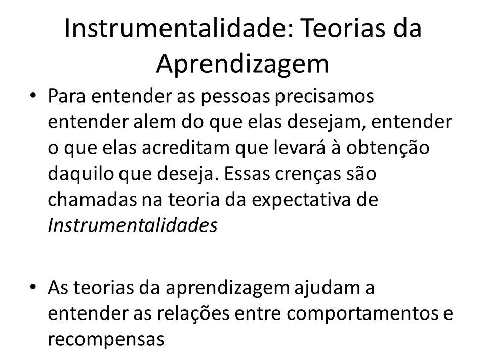 Instrumentalidade: Teorias da Aprendizagem Para entender as pessoas precisamos entender alem do que elas desejam, entender o que elas acreditam que le