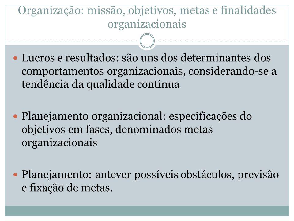 Organização: missão, objetivos, metas e finalidades organizacionais Lucros e resultados: são uns dos determinantes dos comportamentos organizacionais,
