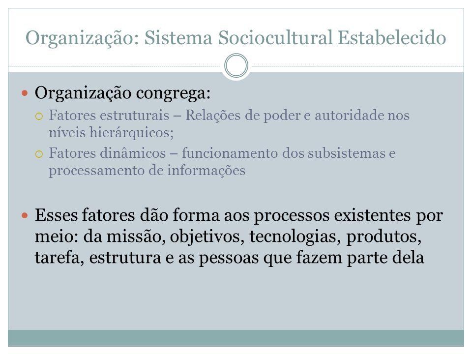 Organização: Sistema Sociocultural Estabelecido Organização congrega: Fatores estruturais – Relações de poder e autoridade nos níveis hierárquicos; Fa