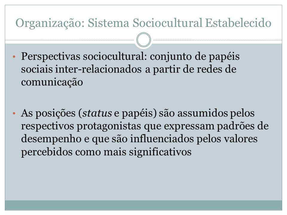 Organização: Sistema Sociocultural Estabelecido Perspectivas sociocultural: conjunto de papéis sociais inter-relacionados a partir de redes de comunic