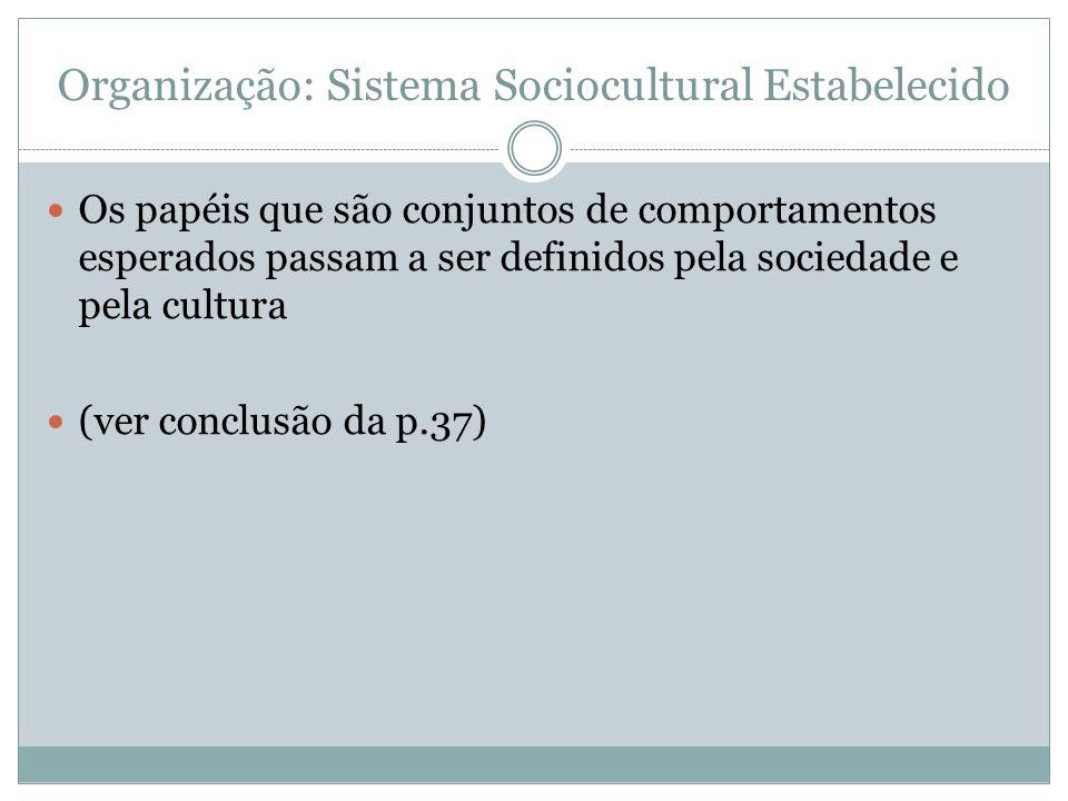 Organização: Sistema Sociocultural Estabelecido Os papéis que são conjuntos de comportamentos esperados passam a ser definidos pela sociedade e pela c