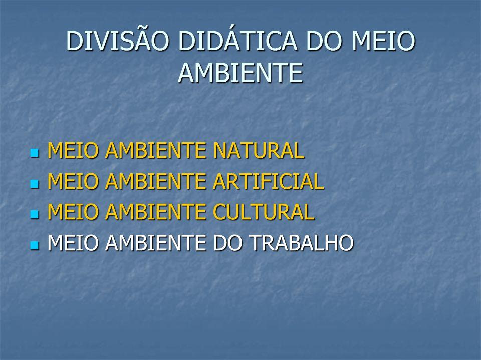 DIVISÃO DIDÁTICA DO MEIO AMBIENTE MEIO AMBIENTE NATURAL MEIO AMBIENTE NATURAL MEIO AMBIENTE ARTIFICIAL MEIO AMBIENTE ARTIFICIAL MEIO AMBIENTE CULTURAL