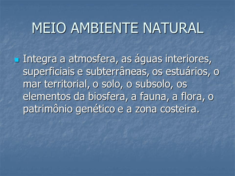 MEIO AMBIENTE NATURAL Integra a atmosfera, as águas interiores, superficiais e subterrâneas, os estuários, o mar territorial, o solo, o subsolo, os el