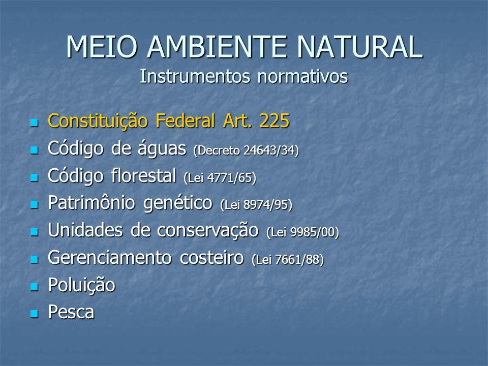 MEIO AMBIENTE NATURAL Instrumentos normativos Constituição Federal Art. 225 Constituição Federal Art. 225 Código de águas (Decreto 24643/34) Código de