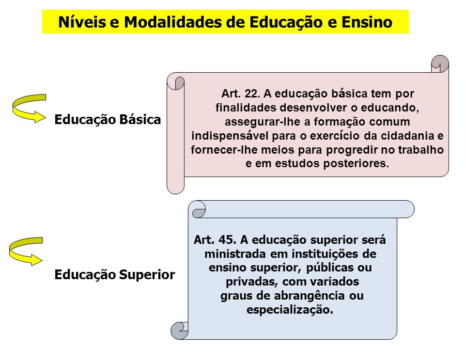Níveis e Modalidades de Educação e Ensino Educação Básica Educação Superior Art. 45. A educação superior será ministrada em instituições de ensino sup