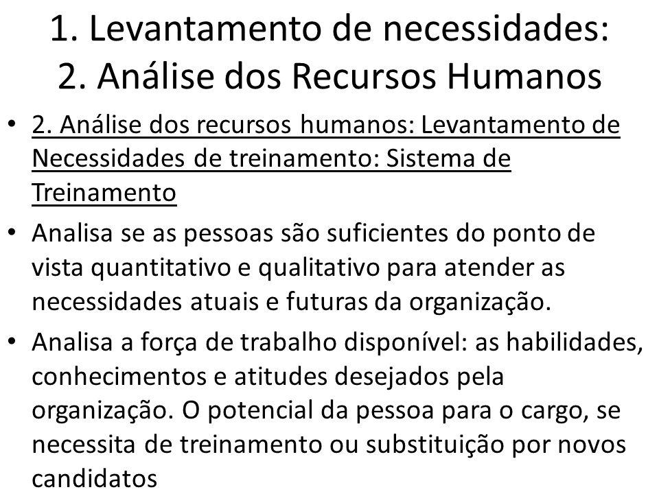 1. Levantamento de necessidades: 2. Análise dos Recursos Humanos 2. Análise dos recursos humanos: Levantamento de Necessidades de treinamento: Sistema