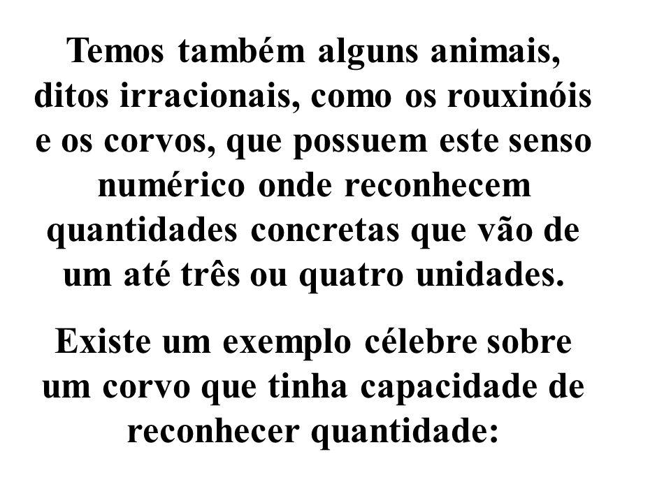Temos também alguns animais, ditos irracionais, como os rouxinóis e os corvos, que possuem este senso numérico onde reconhecem quantidades concretas q