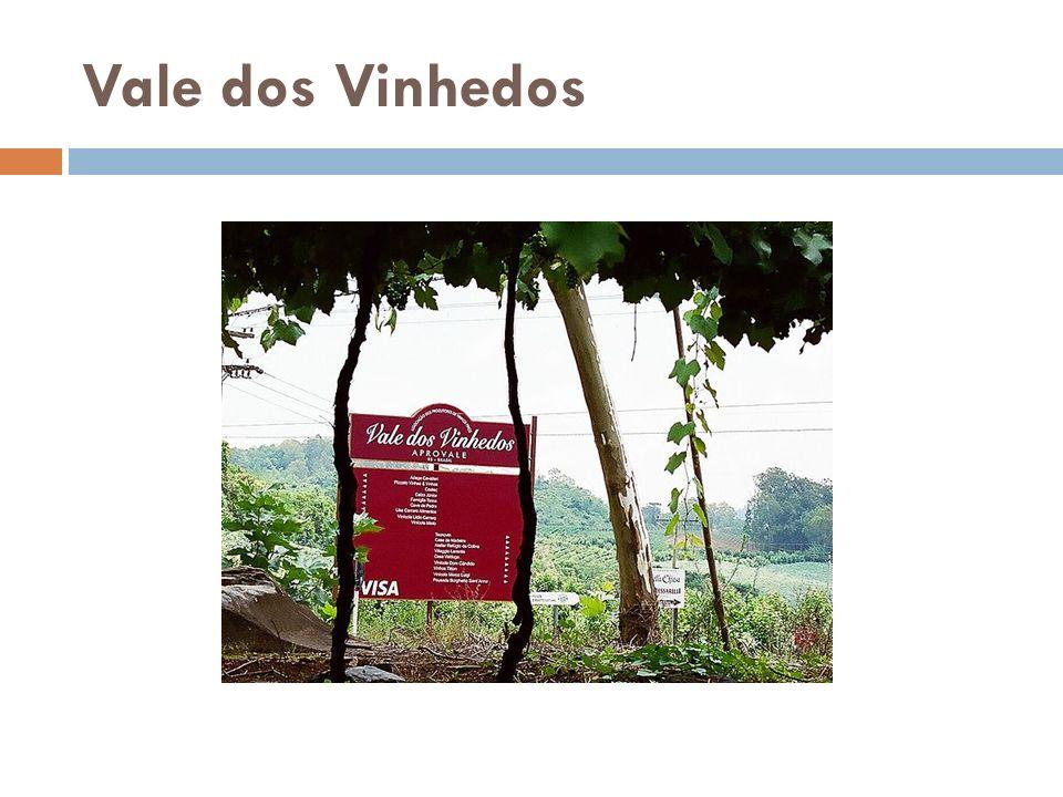Os Vinhos Degustação Villa Lobos Brasil – Vale dos Vinhedos Produtor – Casa Valduga Castas: Cabernet Sauvignon Álcool: 13% Vol.