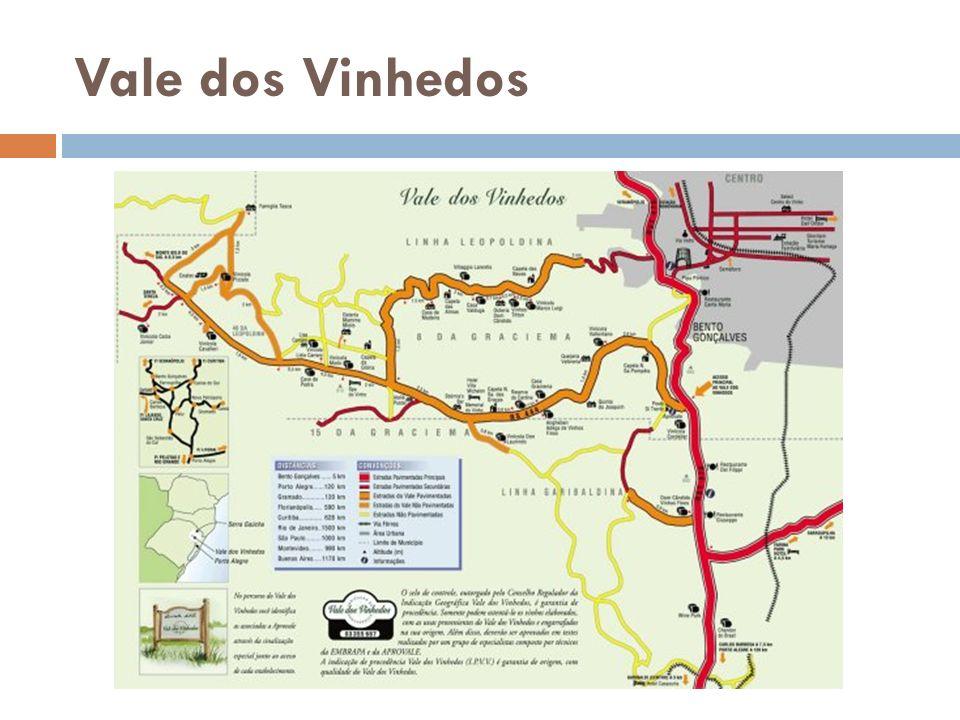 Os Vinhos Degustação Identidade Brasil – Vale dos Vinhedos Produtor – Casa Valduga Castas: Cabernet Sauvignon Variedade: Marselan Variedade: Grenache Álcool: 13,7% Vol.