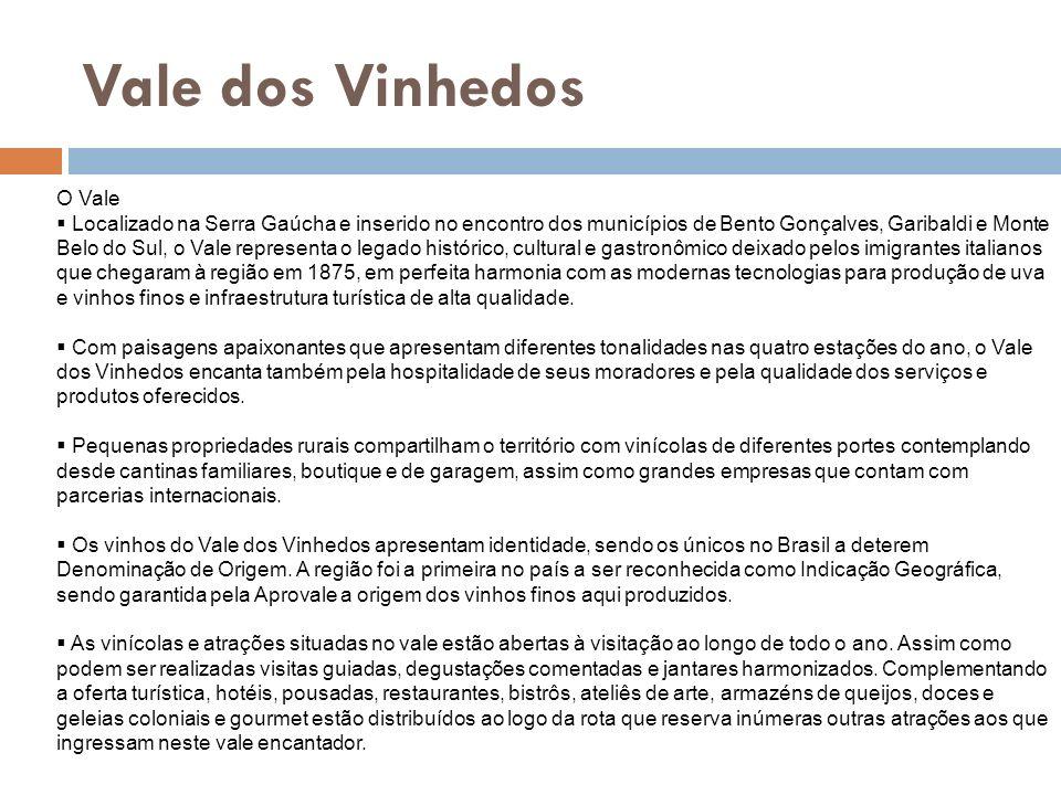 Vale dos Vinhedos O Vale dos Vinhedos, localizado entre os municípios de Bento Gonçalves, Garibaldi e Monte Belo do Sul, é a primeira região do Brasil a obter Indicação de Procedência de seus vinhos finos, exibindo o Selo de Controle em vinhos e espumantes elaborados pelas vinícolas associadas.