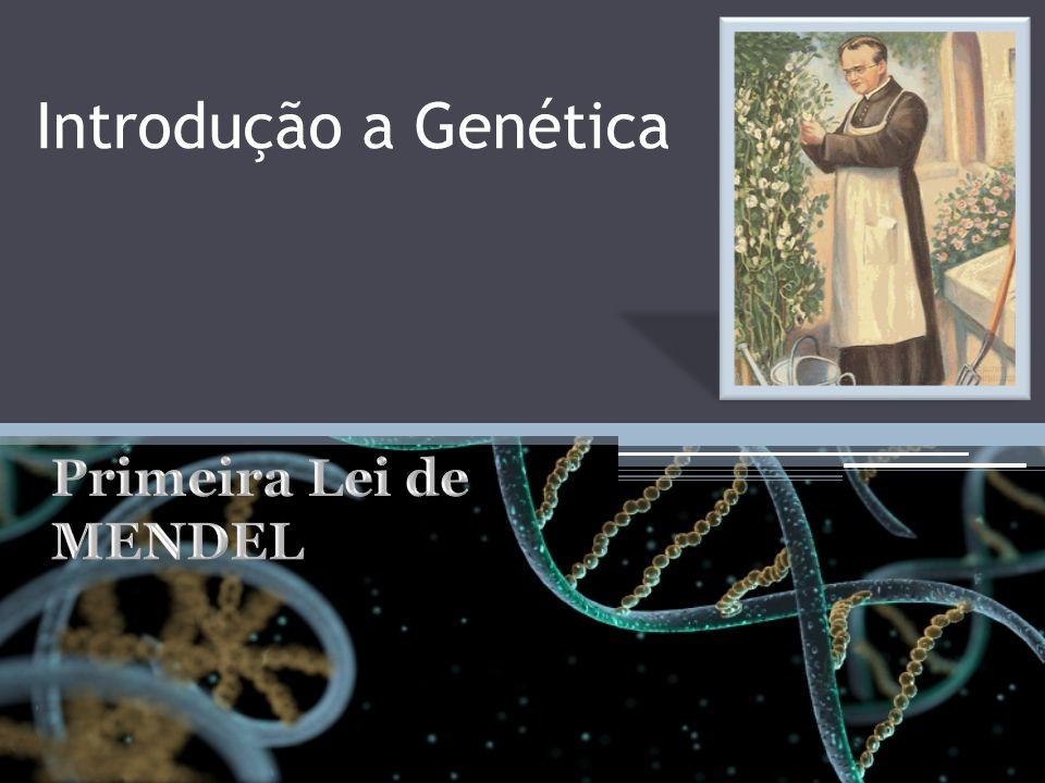 Introdução a Genética