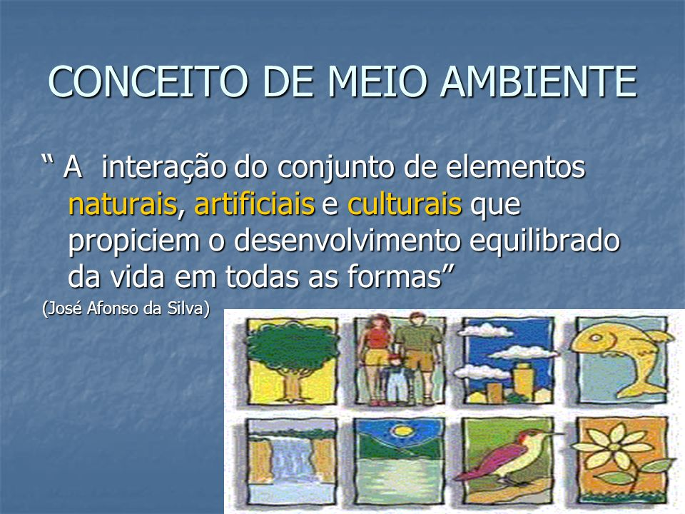 CONCEITO DE MEIO AMBIENTE A interação do conjunto de elementos naturais, artificiais e culturais que propiciem o desenvolvimento equilibrado da vida e