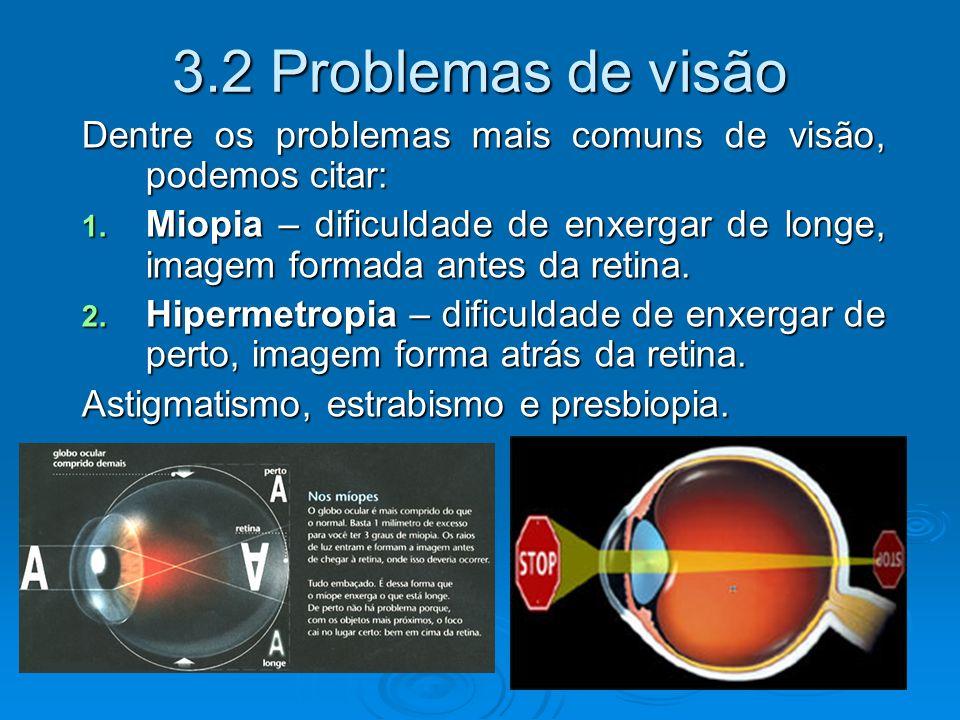 3.2 Problemas de visão Dentre os problemas mais comuns de visão, podemos citar: 1.