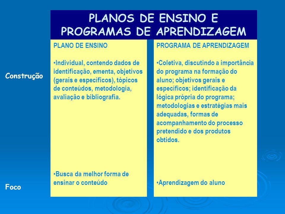 Construção Foco PLANO DE ENSINO Individual, contendo dados de identificação, ementa, objetivos (gerais e específicos), tópicos de conteúdos, metodolog