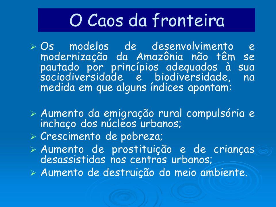 Os modelos de desenvolvimento e modernização da Amazônia não têm se pautado por princípios adequados à sua sociodiversidade e biodiversidade, na medid