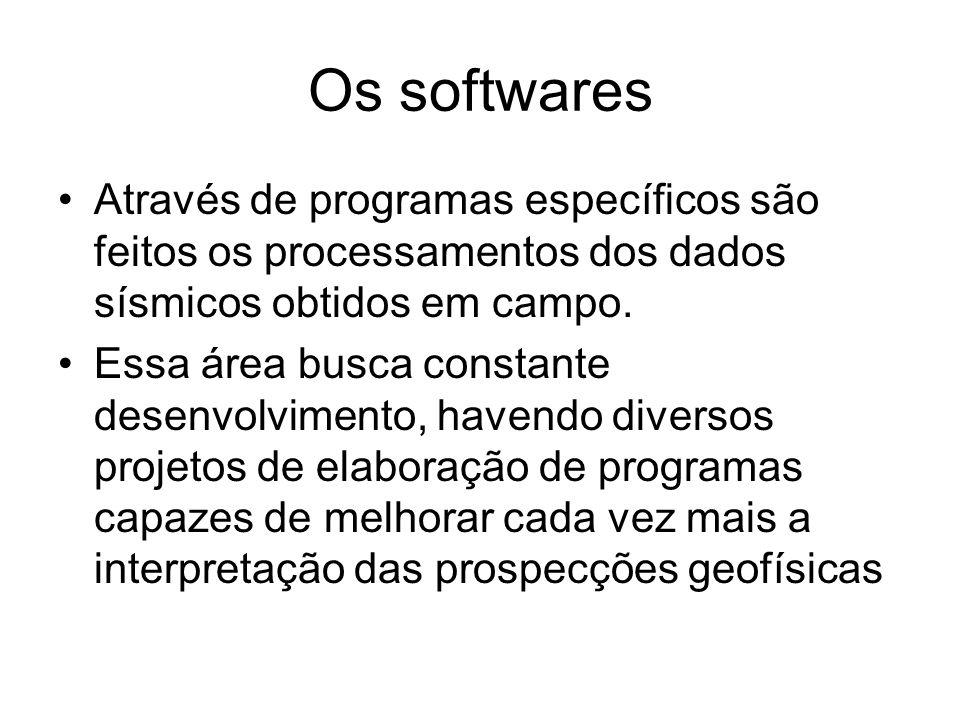 Os softwares Através de programas específicos são feitos os processamentos dos dados sísmicos obtidos em campo. Essa área busca constante desenvolvime