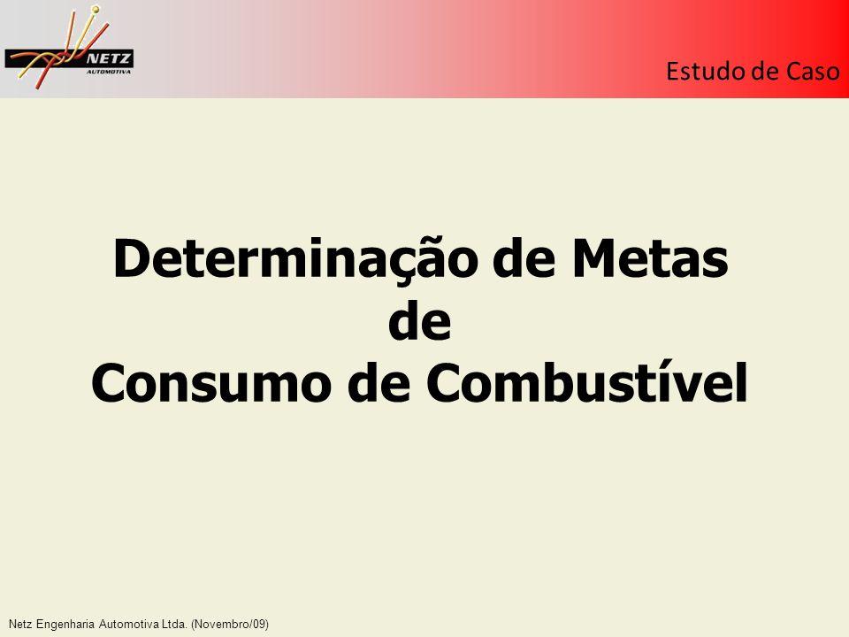 Netz Engenharia Automotiva Ltda. (Novembro/09) Estudo de Caso Determinação de Metas de Consumo de Combustível