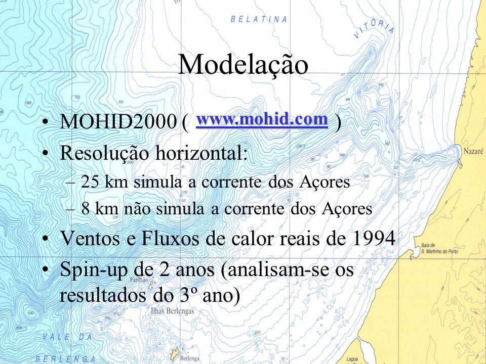 Modelação MOHID2000 ( ) Resolução horizontal: –25 km simula a corrente dos Açores –8 km não simula a corrente dos Açores Ventos e Fluxos de calor reai