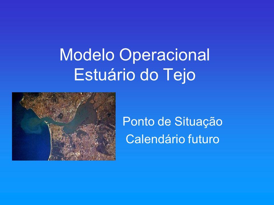 Modelo Operacional Estuário do Tejo Ponto de Situação Calendário futuro