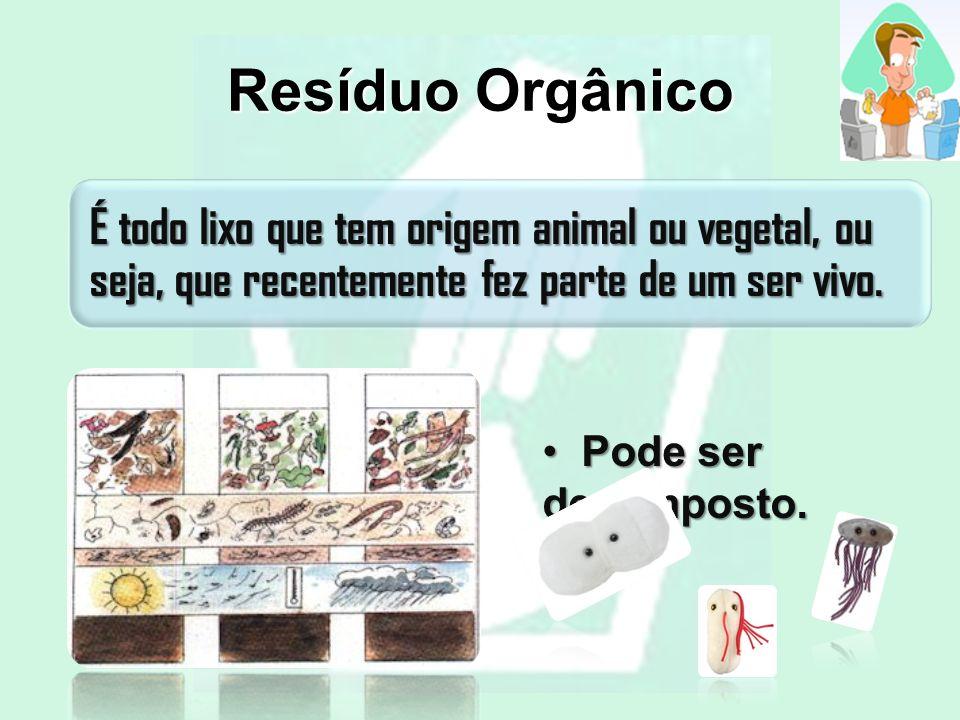 Resíduo Orgânico É todo lixo que tem origem animal ou vegetal, ou seja, que recentemente fez parte de um ser vivo. Pode ser decomposto. Pode ser decom