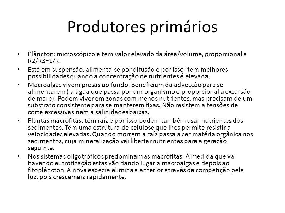 Produtores primários Plâncton: microscópico e tem valor elevado da área/volume, proporcional a R2/R3=1/R. Está em suspensão, alimenta-se por difusão e