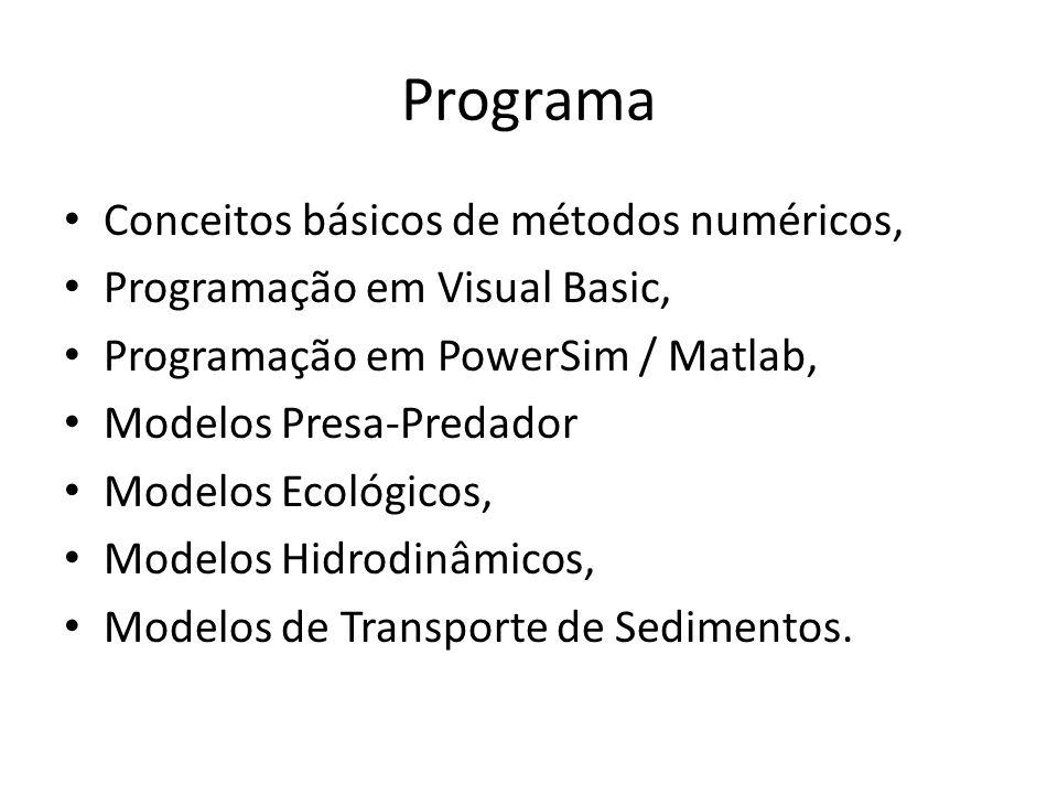 Programa Conceitos básicos de métodos numéricos, Programação em Visual Basic, Programação em PowerSim / Matlab, Modelos Presa-Predador Modelos Ecológicos, Modelos Hidrodinâmicos, Modelos de Transporte de Sedimentos.