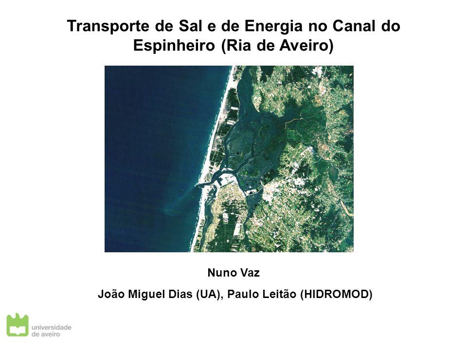 Transporte de Sal e de Energia no Canal do Espinheiro (Ria de Aveiro) Nuno Vaz João Miguel Dias (UA), Paulo Leitão (HIDROMOD)