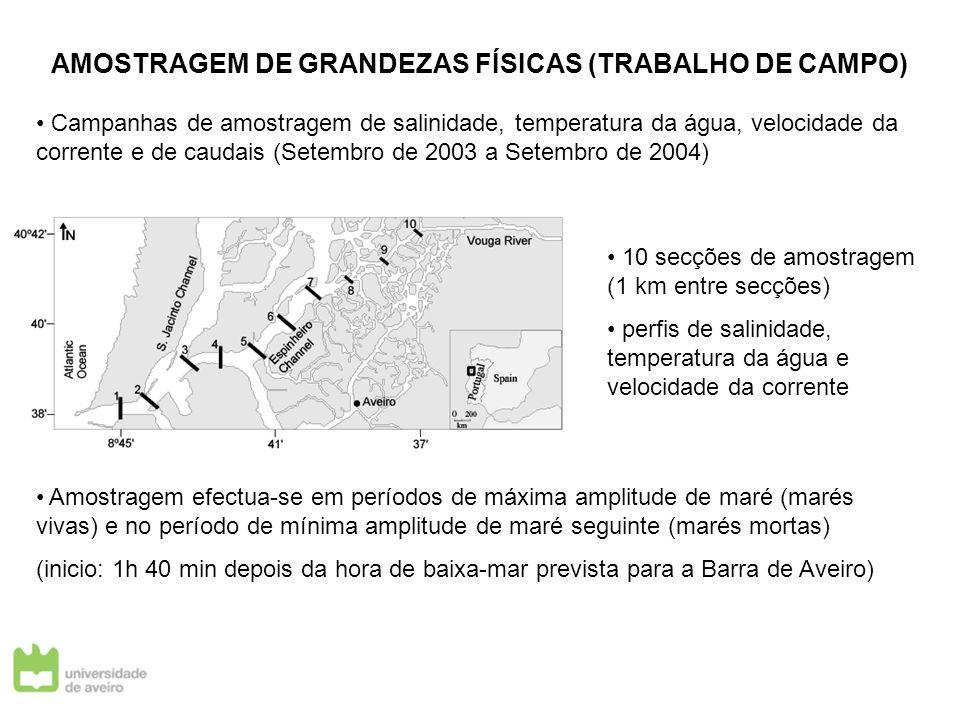 AMOSTRAGEM DE GRANDEZAS FÍSICAS (TRABALHO DE CAMPO) Campanhas de amostragem de salinidade, temperatura da água, velocidade da corrente e de caudais (S