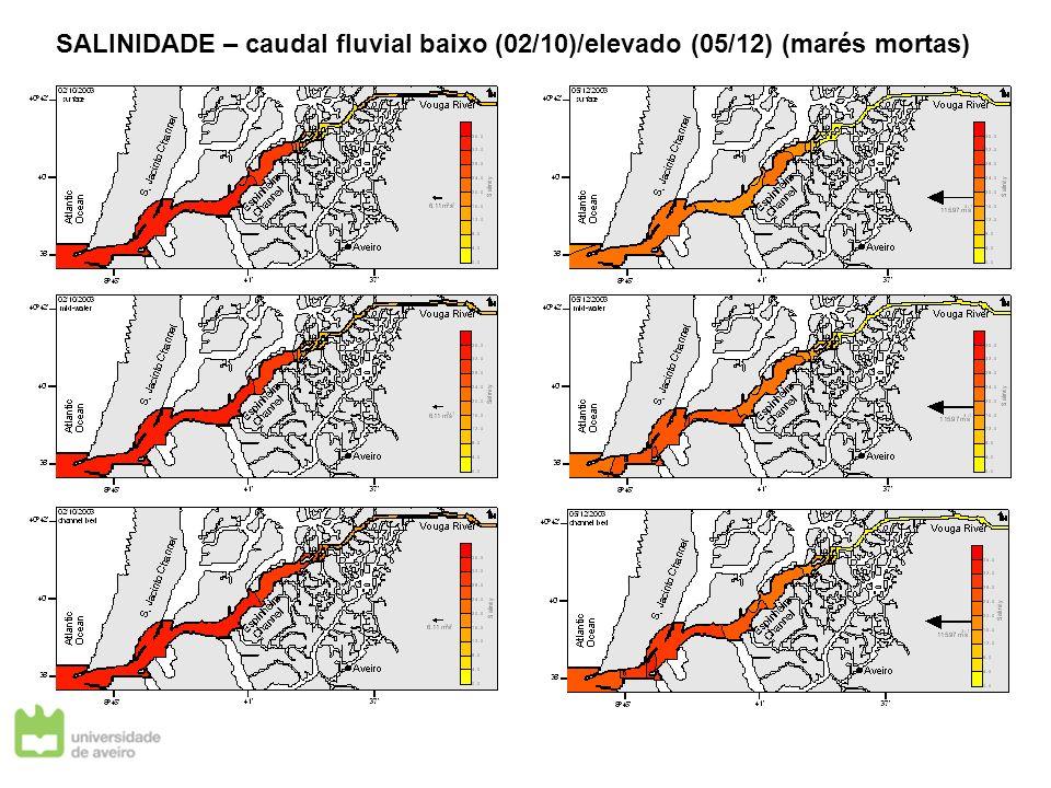 SALINIDADE – caudal fluvial baixo (02/10)/elevado (05/12) (marés mortas)