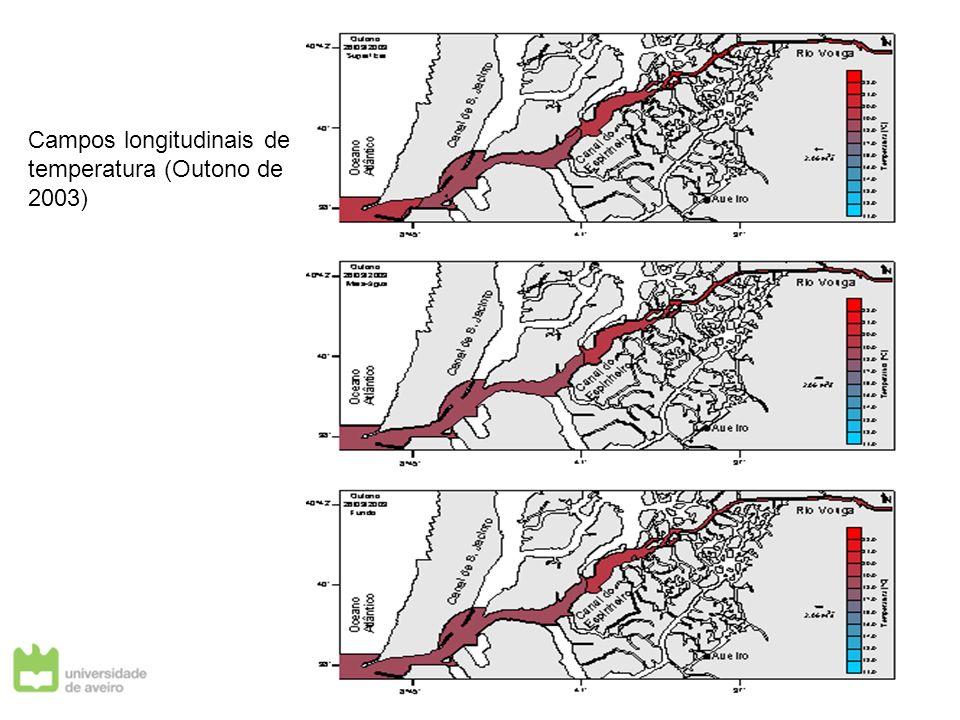 Campos longitudinais de temperatura (Outono de 2003)