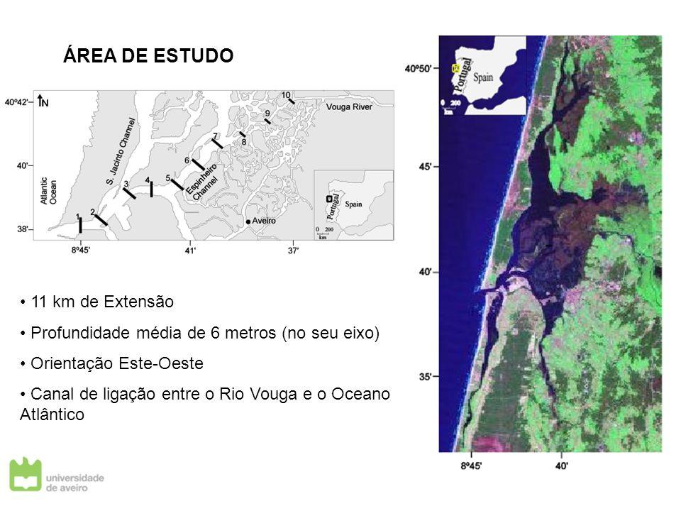 ÁREA DE ESTUDO 11 km de Extensão Profundidade média de 6 metros (no seu eixo) Orientação Este-Oeste Canal de ligação entre o Rio Vouga e o Oceano Atlâ