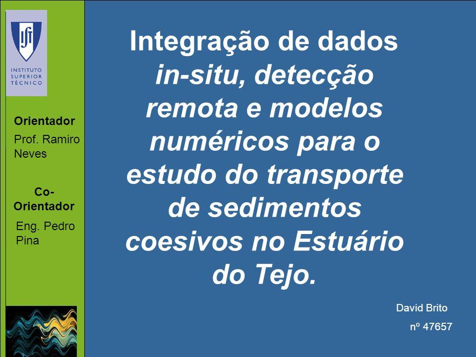 Integração de dados in-situ, detecção remota e modelos numéricos para o estudo do transporte de sedimentos coesivos no Estuário do Tejo. David Brito n