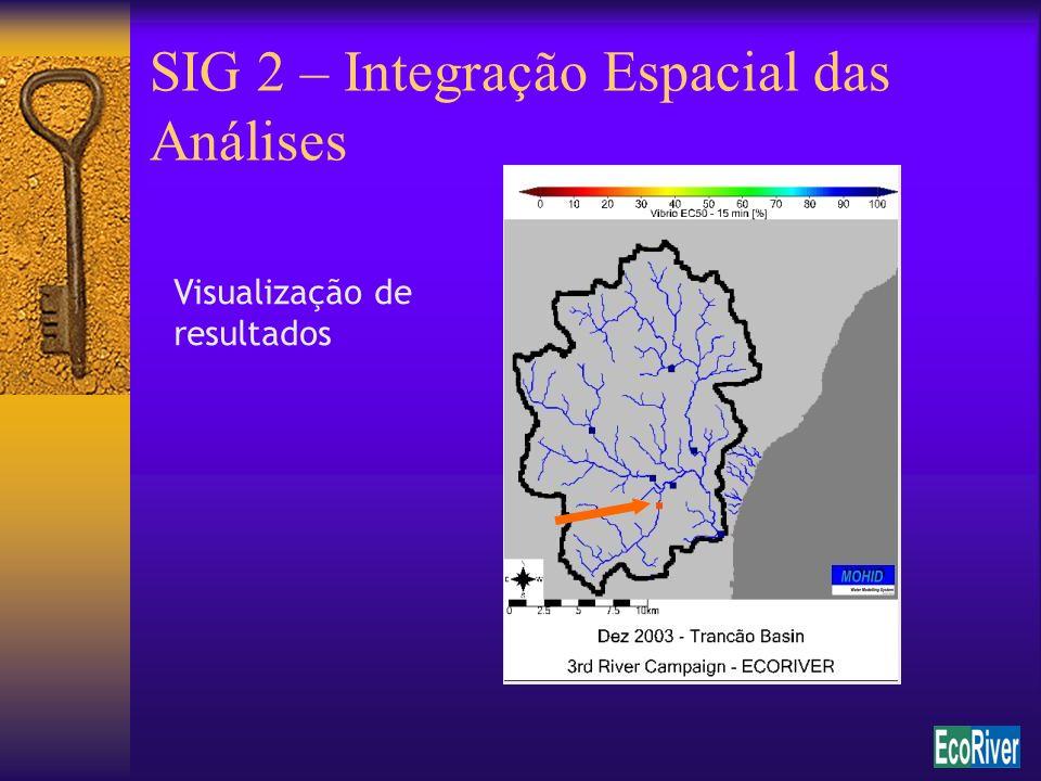 SIG 2 – Integração Espacial das Análises Visualização de resultados