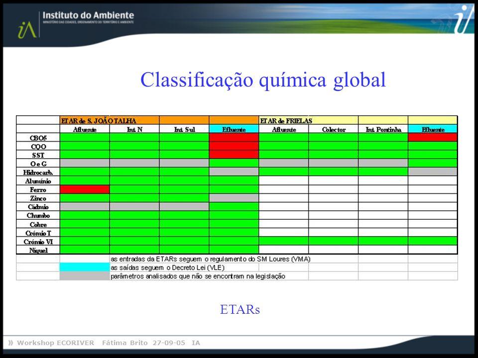 Workshop ECORIVER Fátima Brito 27-09-05 IA Classificação química global ETARs