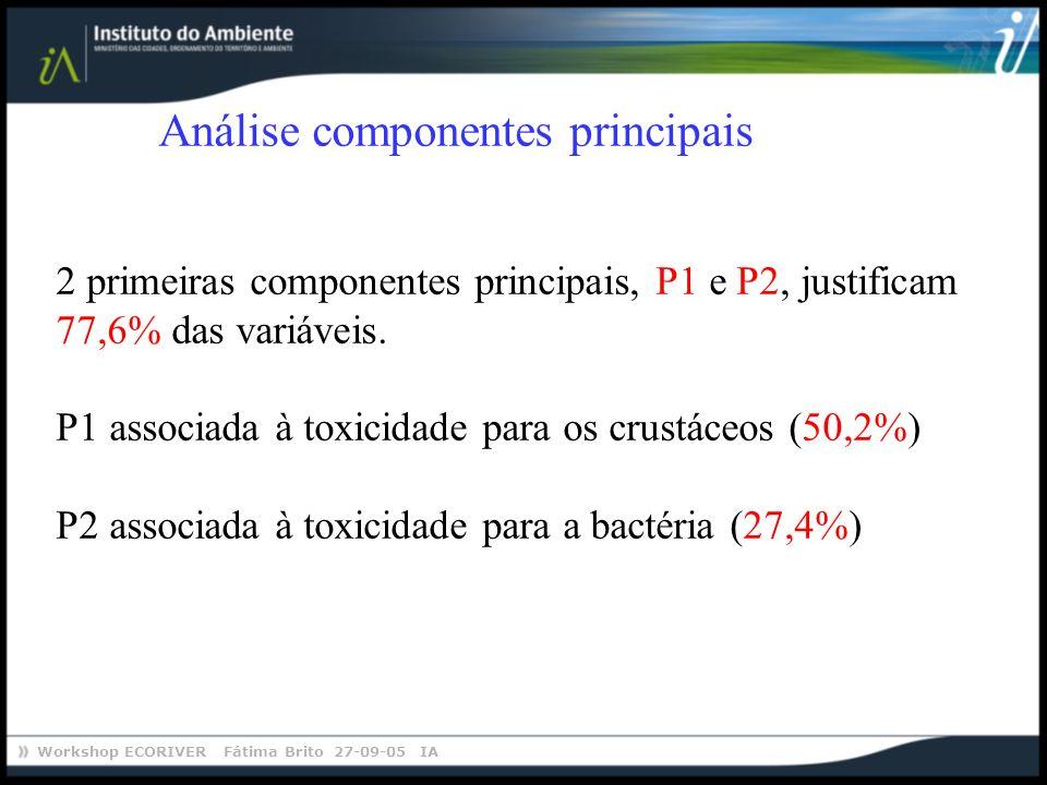 Workshop ECORIVER Fátima Brito 27-09-05 IA Análise componentes principais 2 primeiras componentes principais, P1 e P2, justificam 77,6% das variáveis.